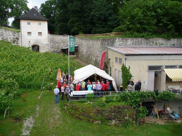 Weinpraesentation-2013_004