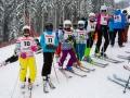 21.januar 2018 © serie 743-4710 landesschimeisterschaft pfadfinder und pfadfinderinnen salzburg veröffentlichung und nutzung nur mit schriftlicher genehmigung www.foto-sturm.at